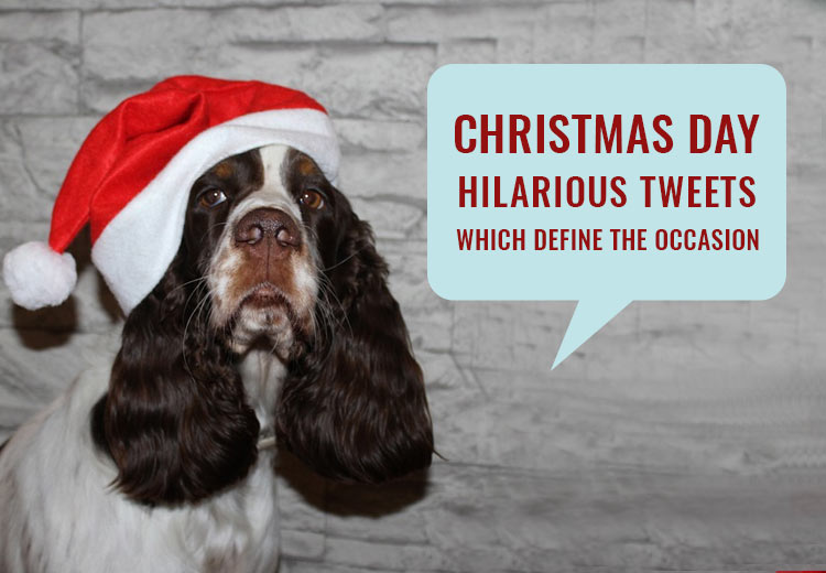 Christmas Day-Hilarious Tweets Which Define The Occasion