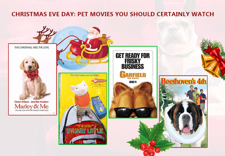 Christmas Eve Day: Pet Movies You Should Certainly Watch