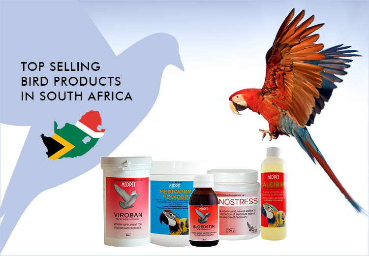 Top Selling Bird Products in South Africa