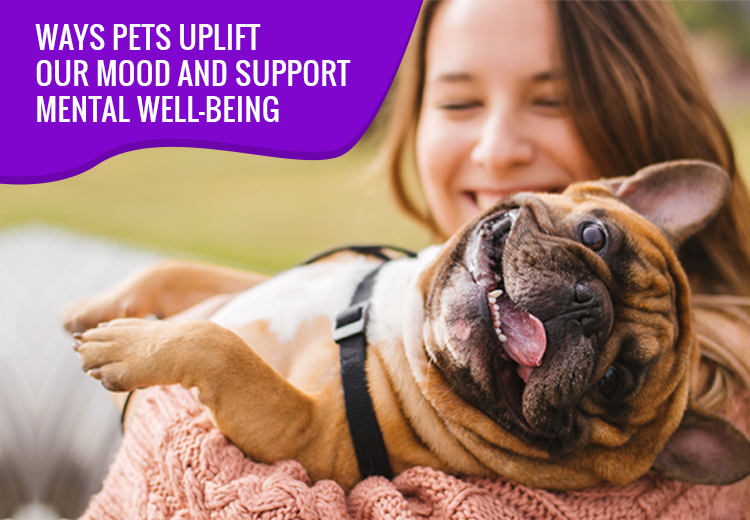 Ways Pets Uplift Our Mood and Support Mental Well-being