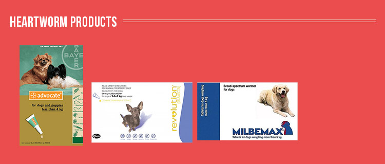Best Heartworm Products For Dogs south Africa