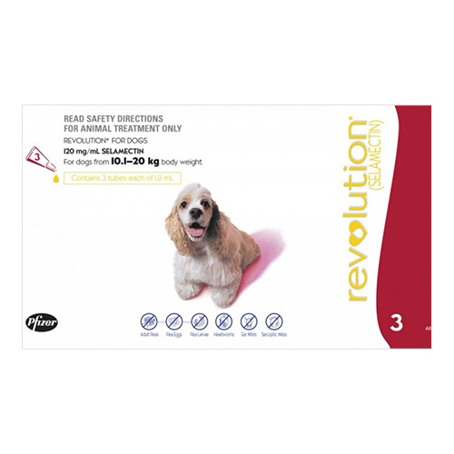 For Large Dogs 10-20KG - Red (1ML)