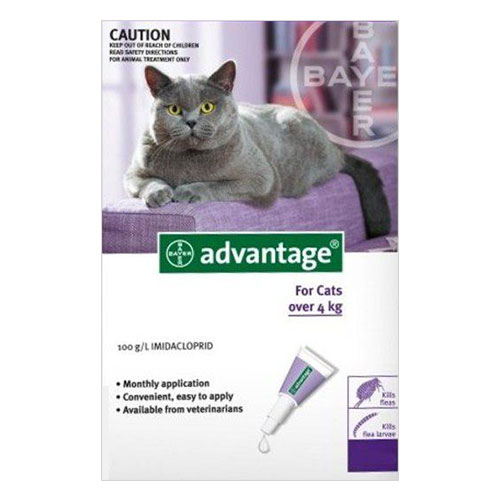 Advantage-for-Large-Cats-above-4-KG-Purple.jpg