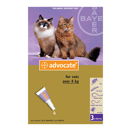 Advocate for Large Cats above 4 KG - Purple (0.8ml)