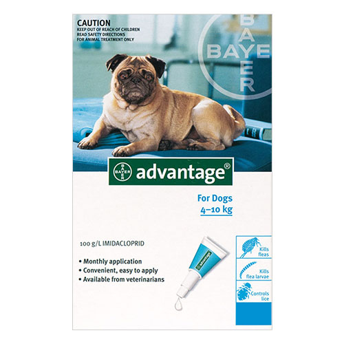 advantage-for-medium-dogs-4-10kg-turqouise-1-0ml-pack.jpg