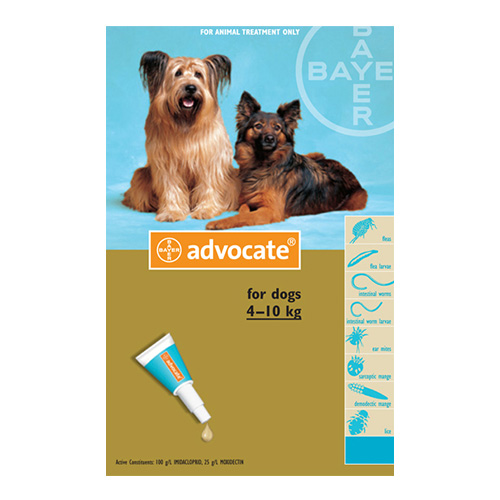 Advocate for Medium Dogs 4-10Kg - Turqouise (1.0ML)
