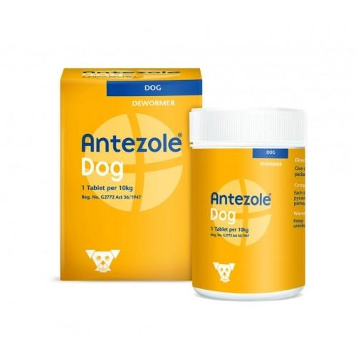 Antezole Tabs Tablets for Medium Dogs