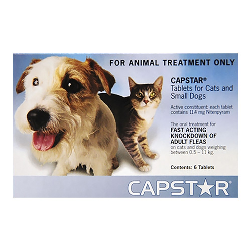 Capstar for Cats and Small Dogs (Blue)