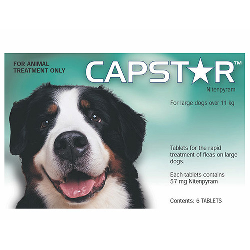 Capstar for Large Dogs (Green)